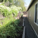 medford_delta_light_exterior_vegetable_garden.jpg