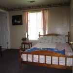 medford_delta_light_interior_bedroom2.jpg