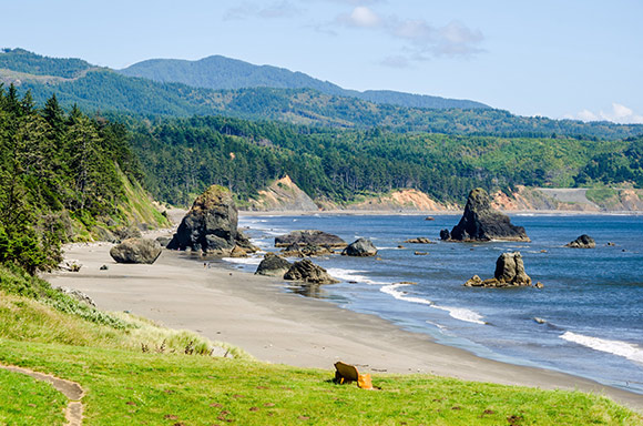 The Oregon Coast Offers An Exciting Excursion Opportunity For Seniors And Youthful Individuals Alike From Southern If You Are Planning A One Or